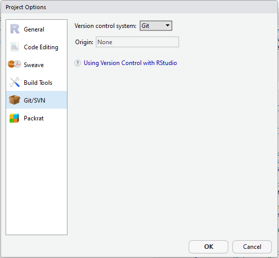RStudio Tools - Project Options window